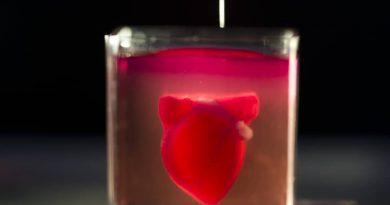 อิสราเอลสร้าง หัวใจจากเครื่องพิมพ์3มิติ ครั้งแรกของโลก
